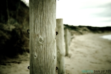 Rustic Posts Perspective