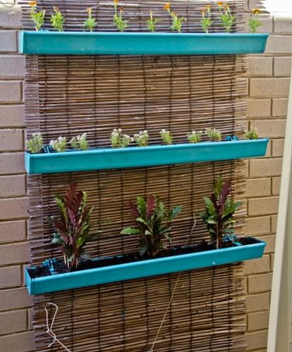 Vertical Gutter Garden DIY