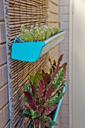 DIY Black Vertical Garden Planters Blue Gutter