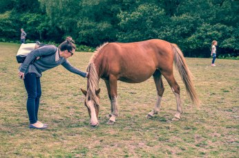 Rachel and Wild Horse - New Forest